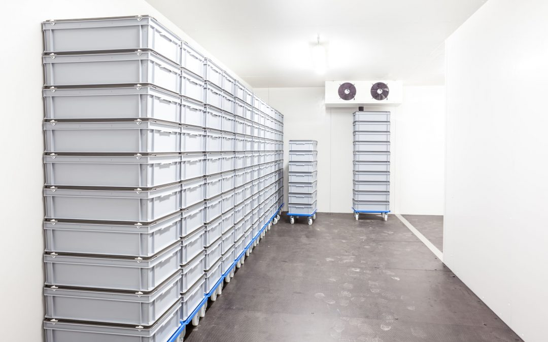 7 Things to Consider When Choosing a Long Term Storage Unit